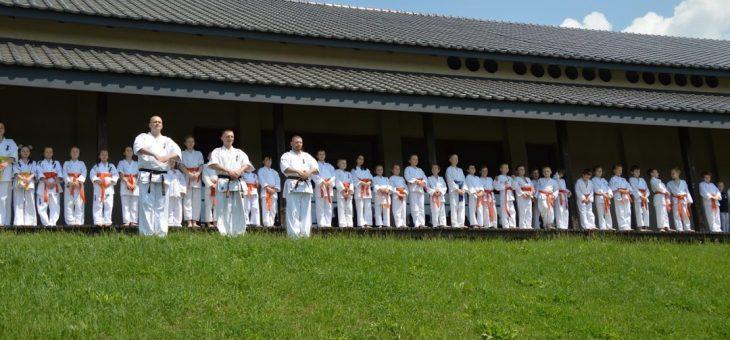 """Zapisy do Klubu Karate Kyokushin """"Chikara"""" – sezon 2020/2021"""